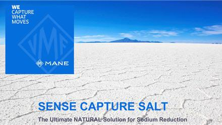 MANE SOLUTION TO  SODIUM REDUCTION